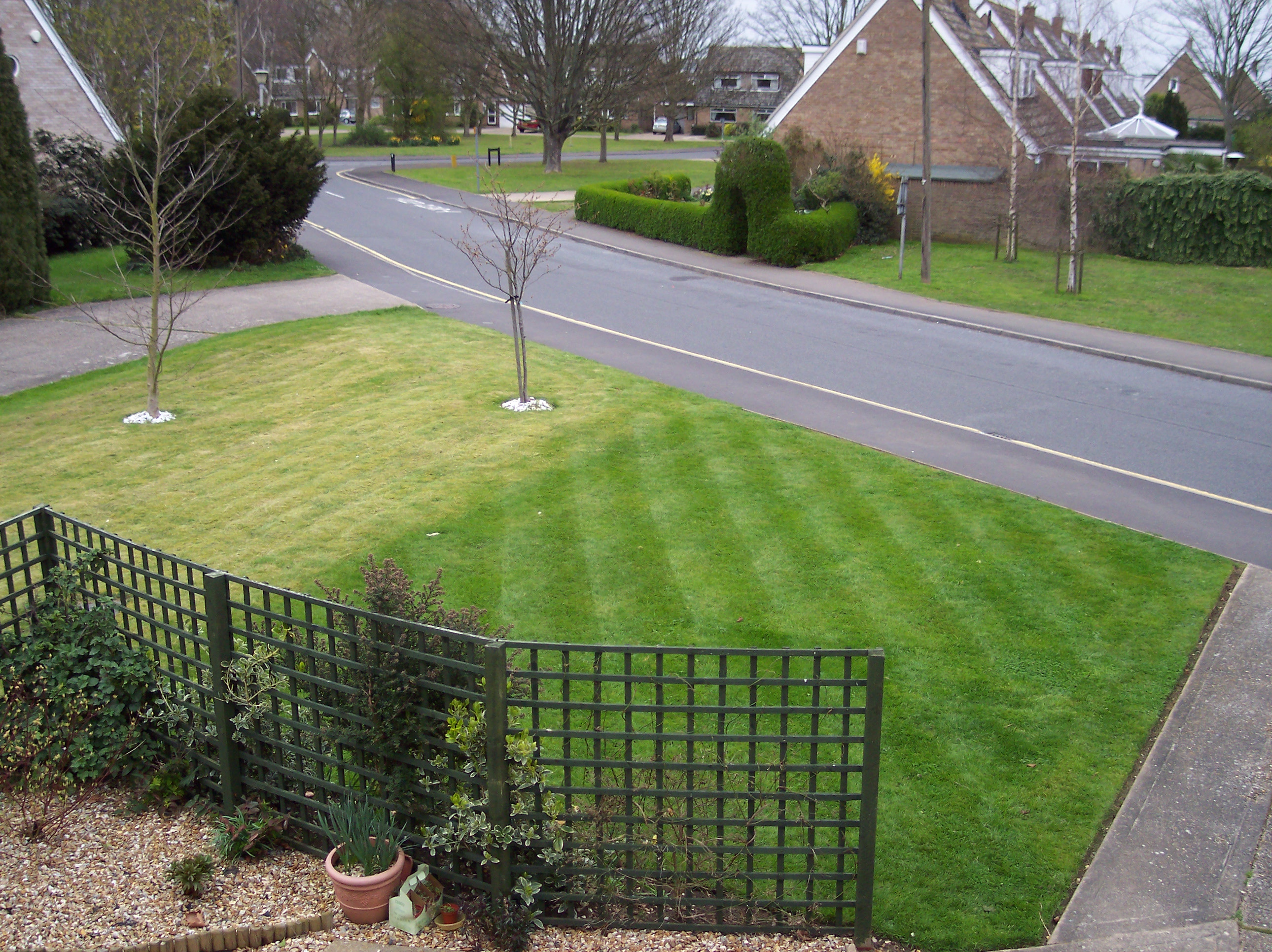 Tackling Common Lawn Problems Love The Garden