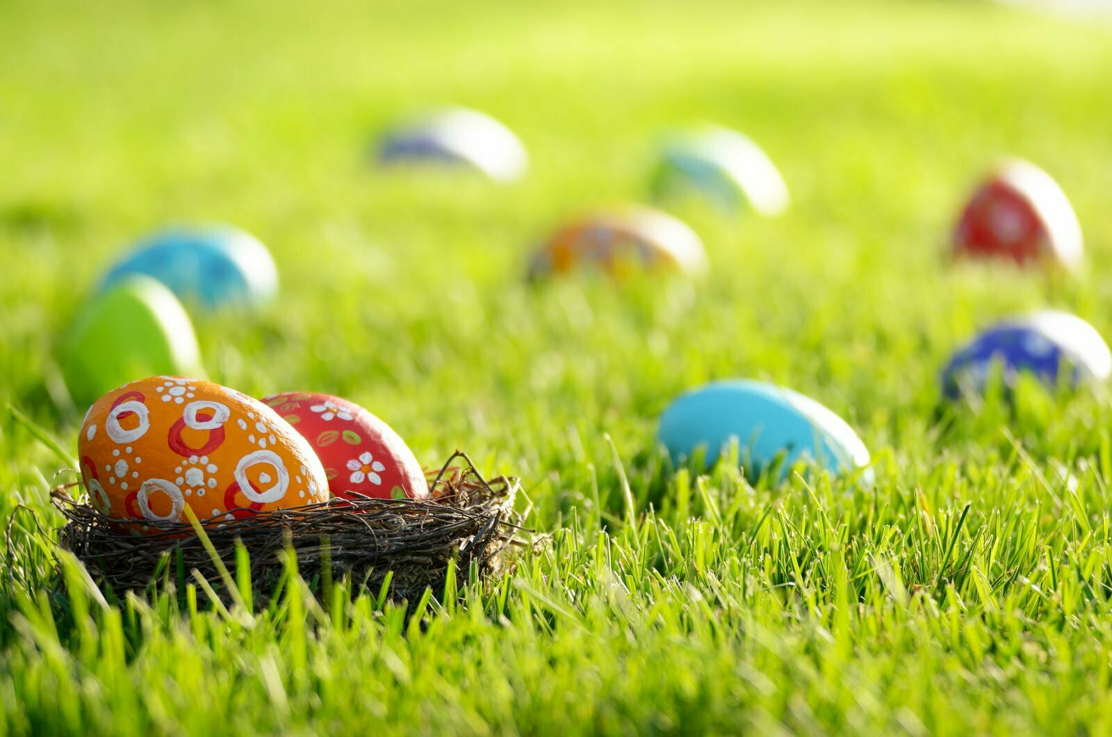 UK Lawn Care easter eggs in lawn