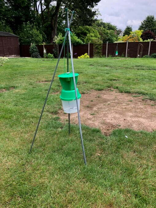 Chafer Grub trap in Garden