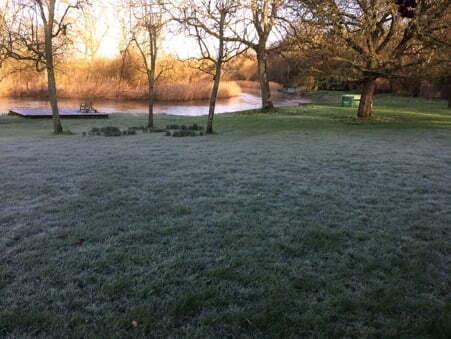 Winter Lawn covered in frost